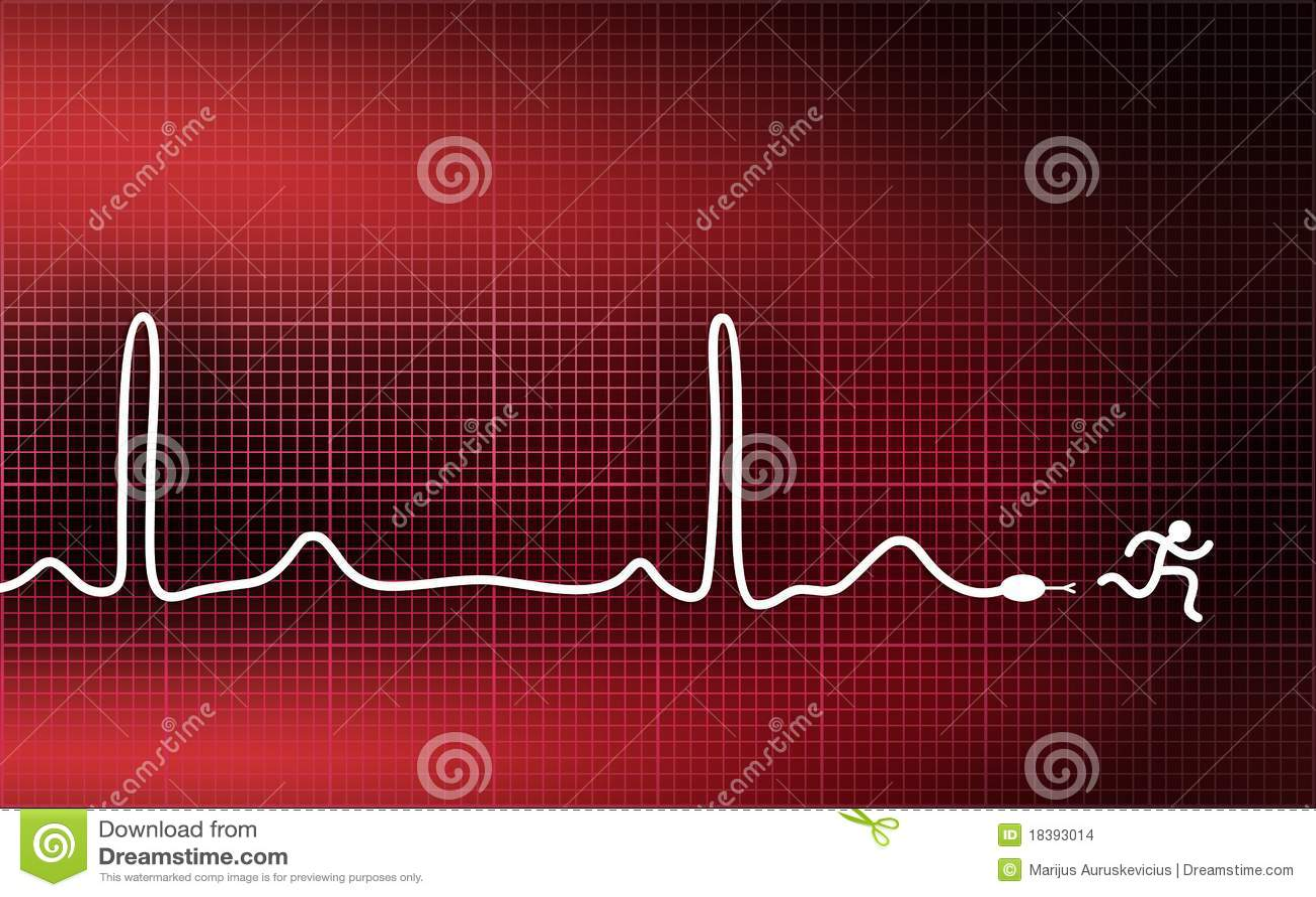 ход человека cardiogram