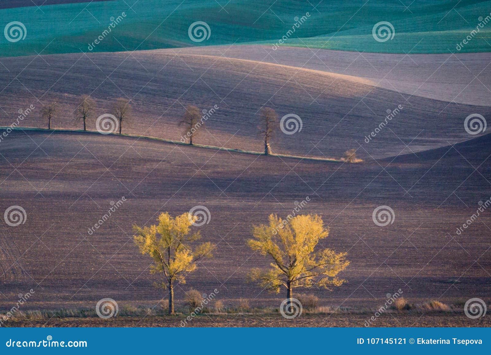 Холмы осени Моравии