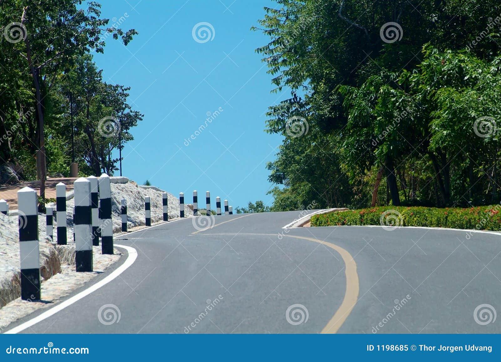 холм над замоткой дороги