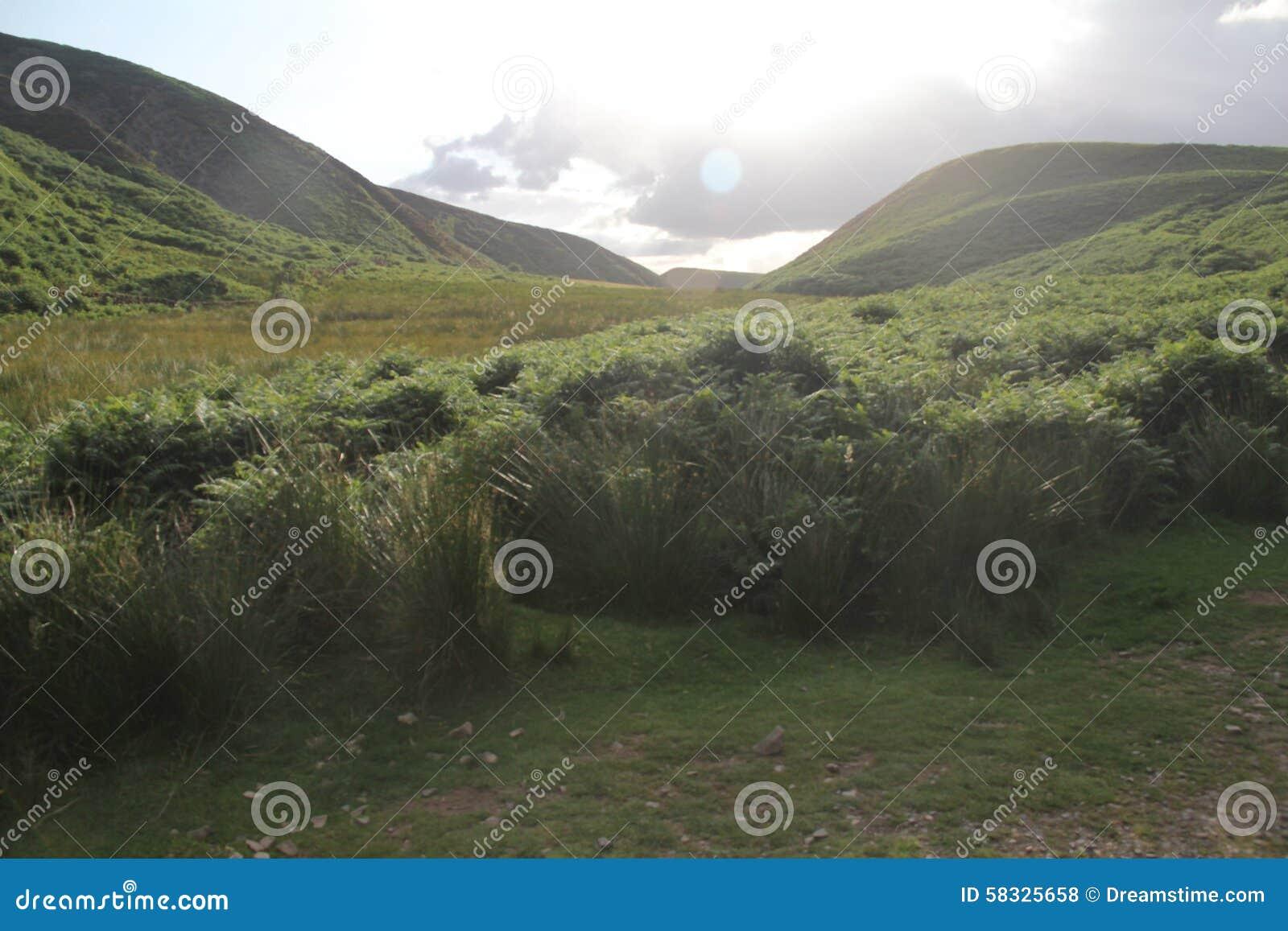 Холмы Pentland около Эдинбурга, Шотландии