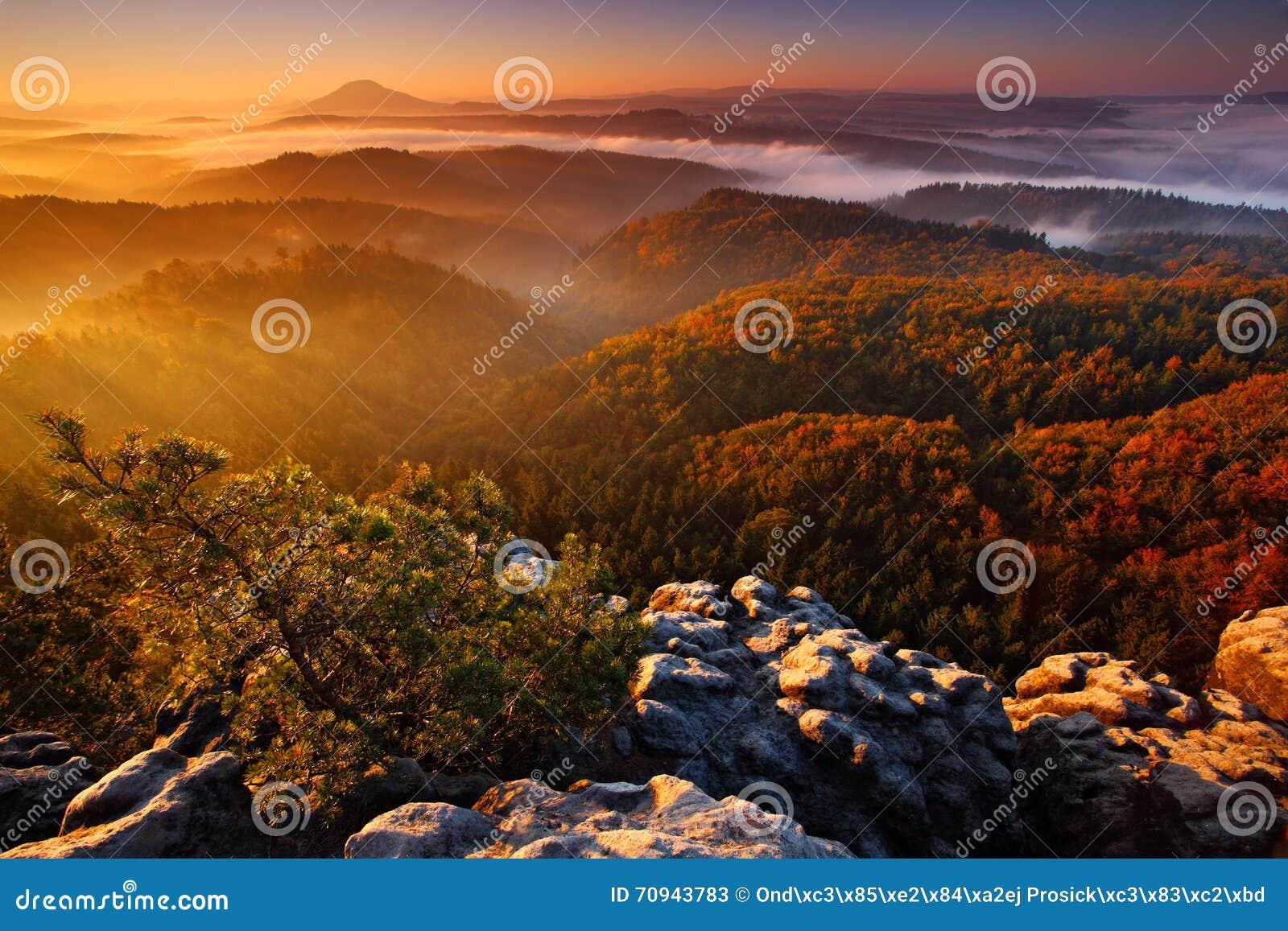 Холодное туманное туманное утро с восходом солнца в долине падения богемского парка Швейцарии Холмы с туманом, ландшафт чехии,