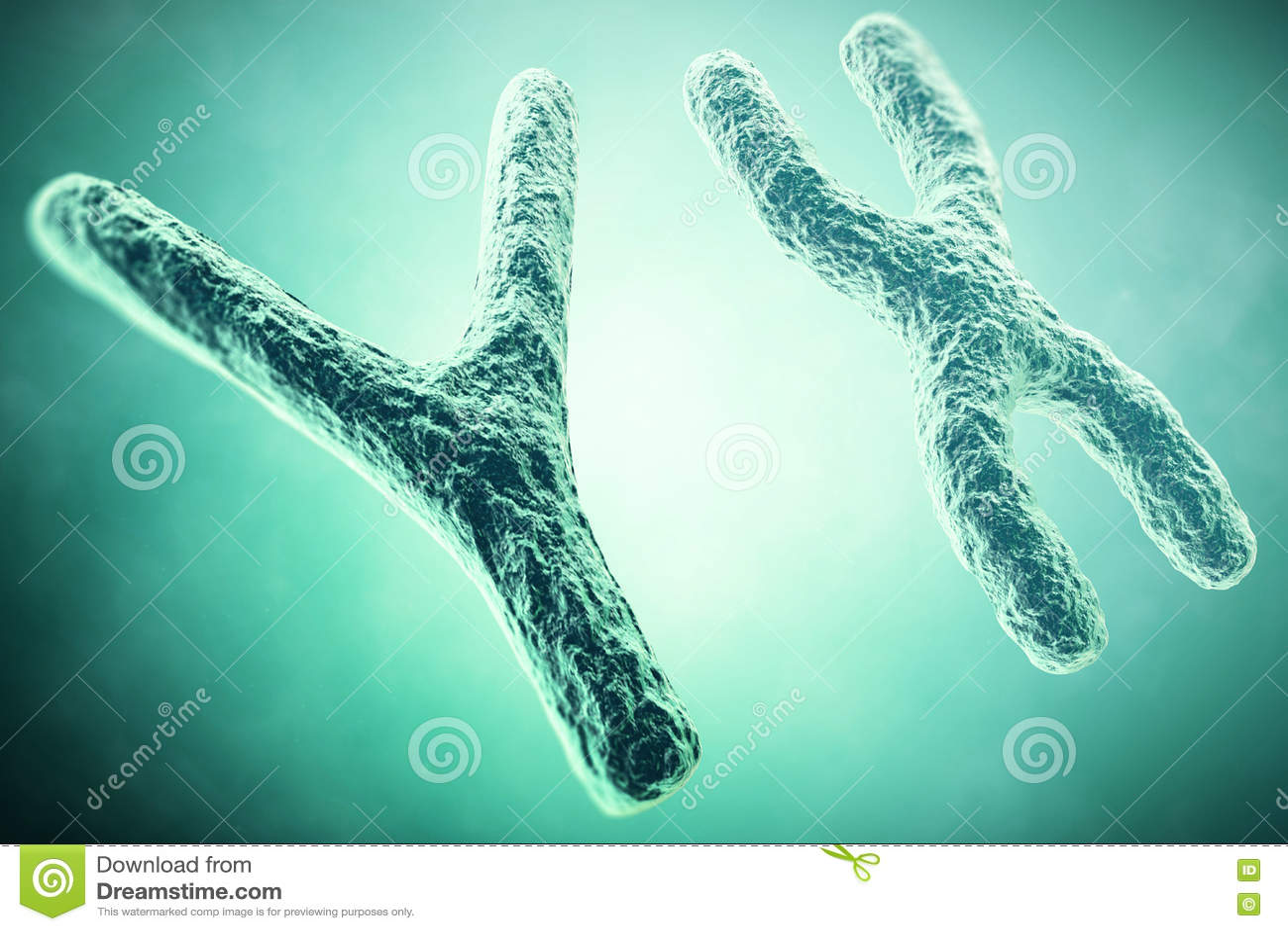 Хромосома YX на переднем плане, научная концепция иллюстрация 3d