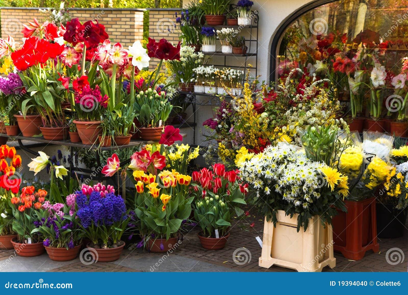 цветастая весна магазина цветков florist