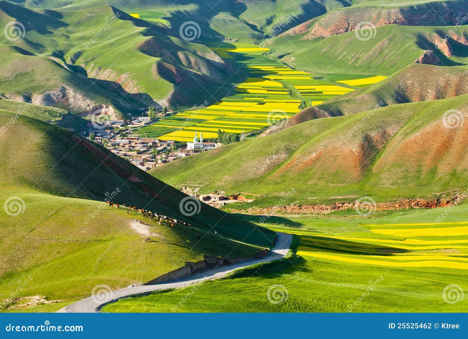цветастая гора ландшафта