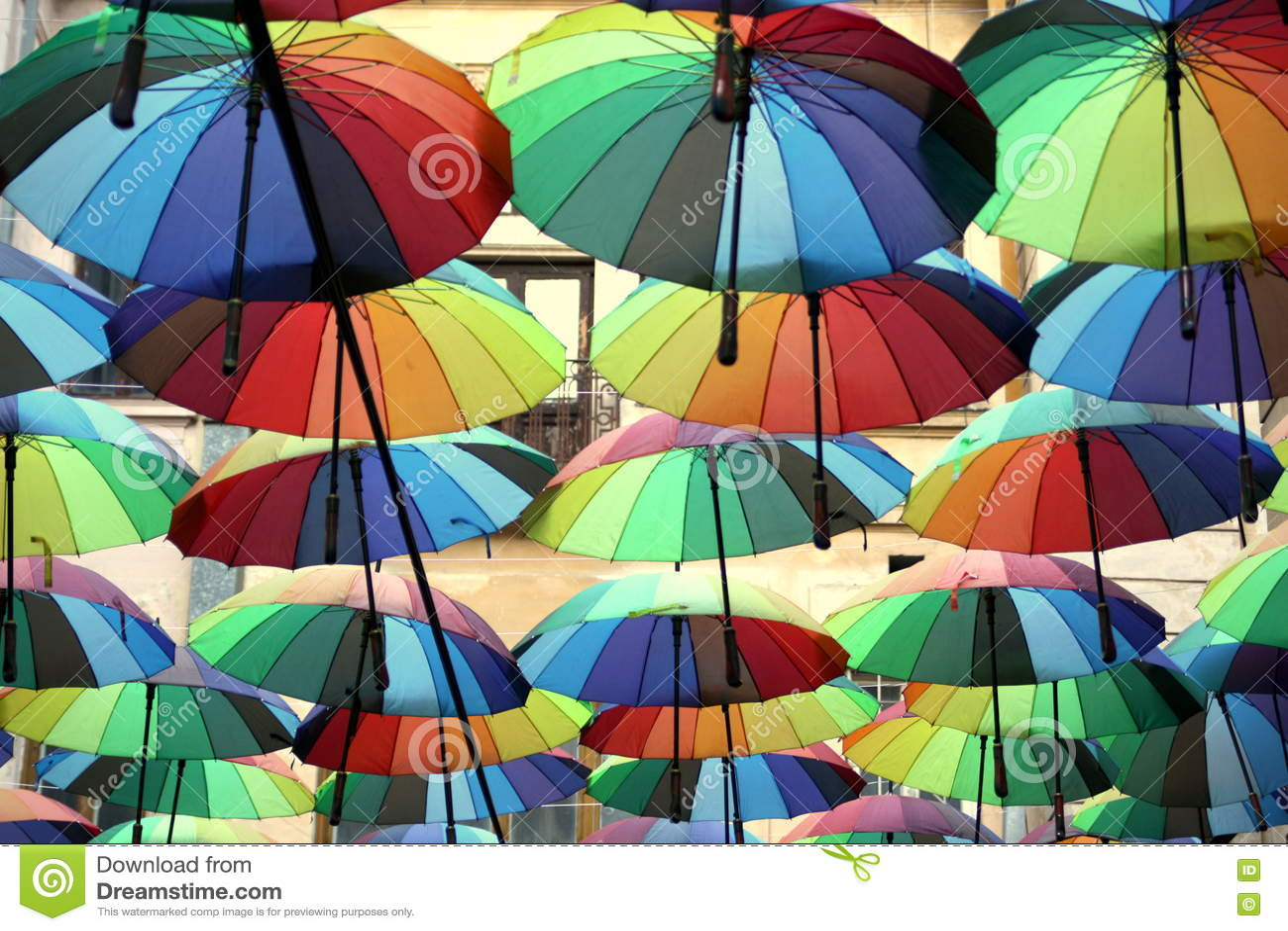 цветастые зонтики