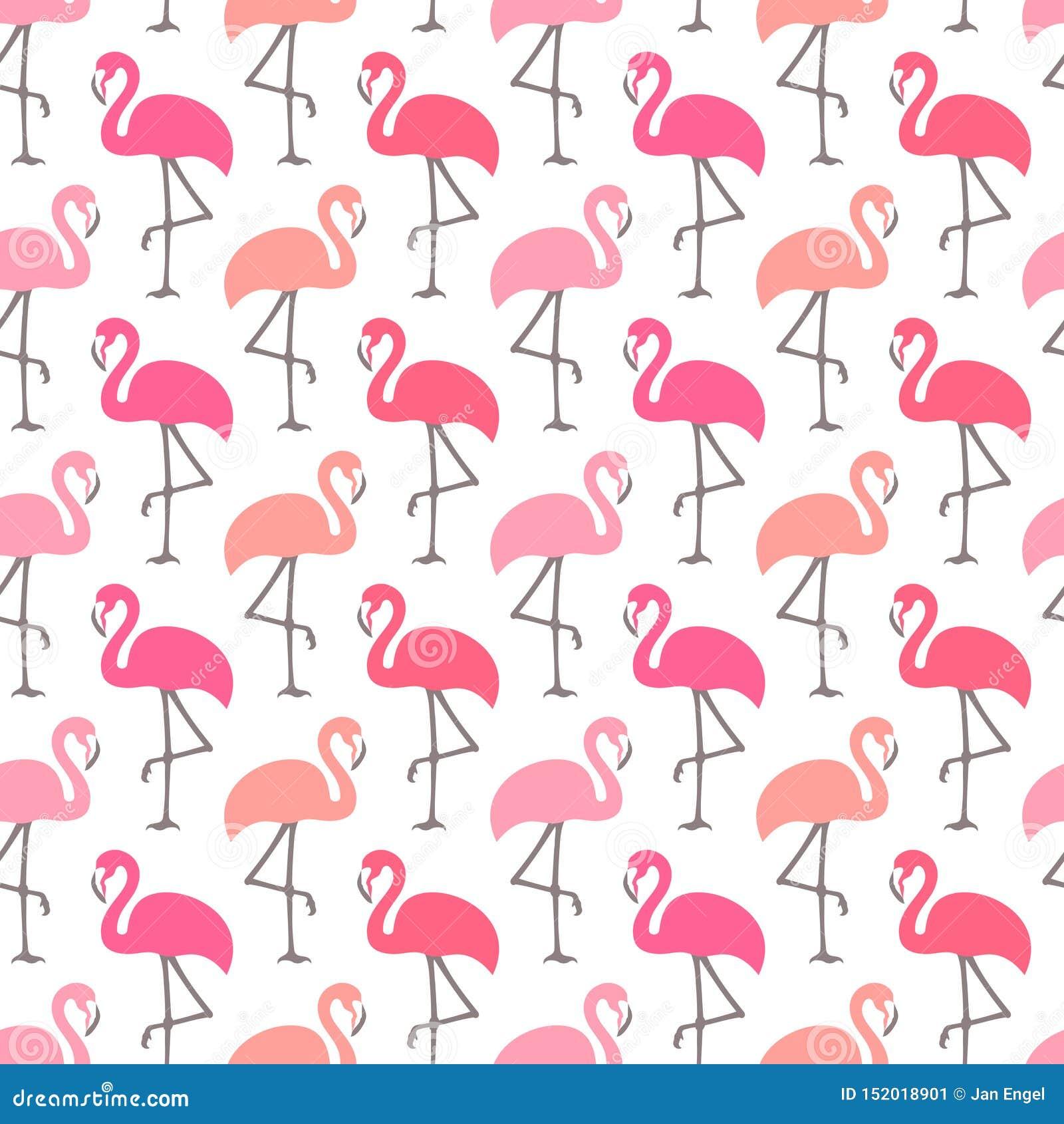 Цвета безшовных фламинго картины графических различные розовые