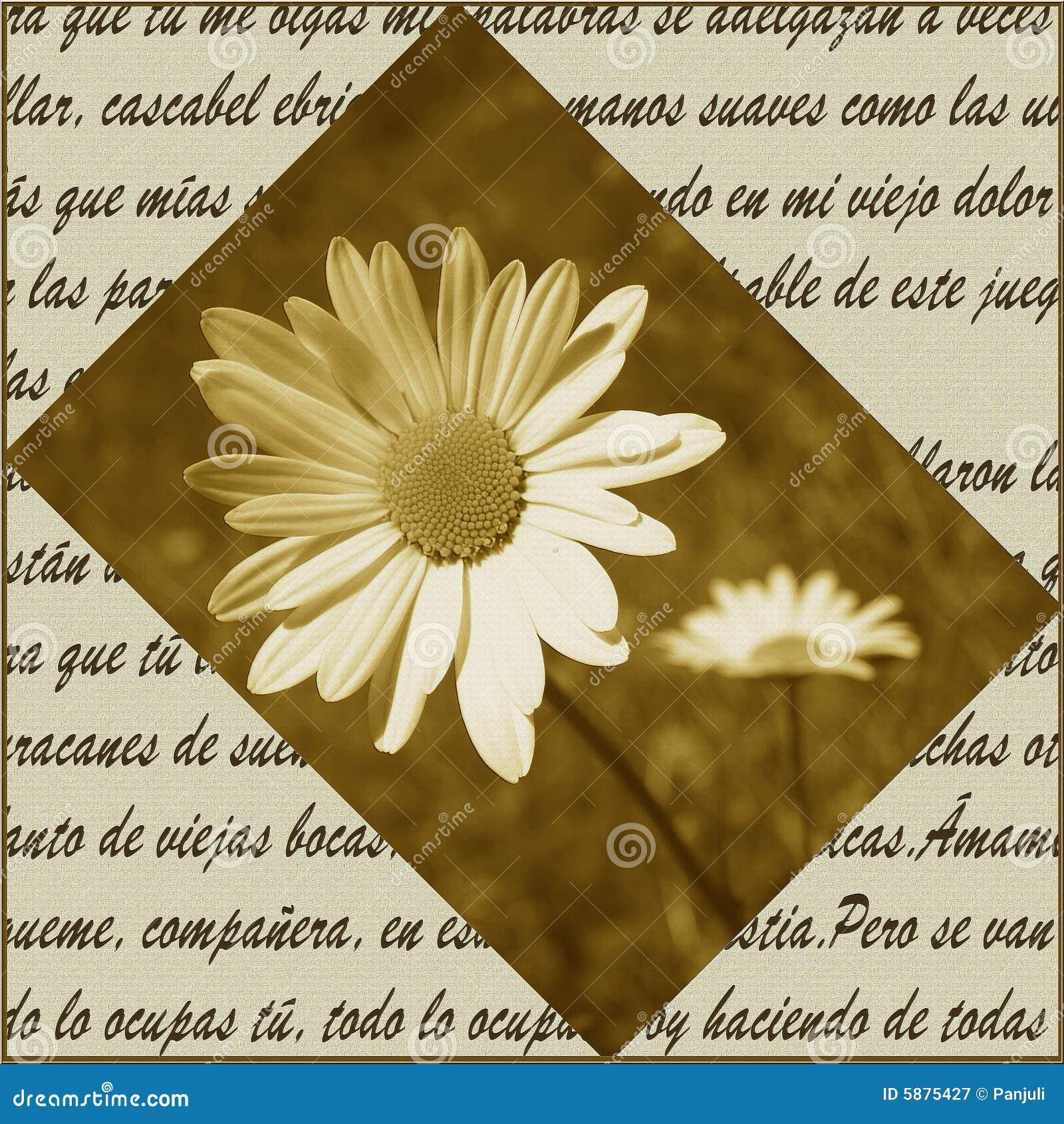 цветет поэзия