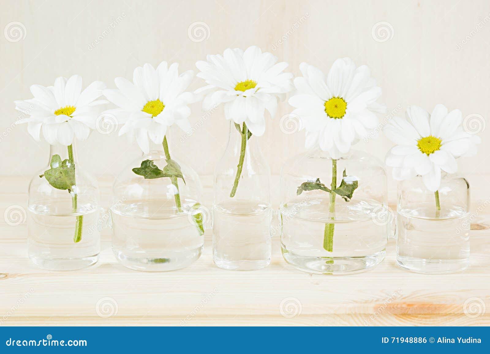 Цветки весны белые на деревянной предпосылке скопируйте космос Справочная информация Картина