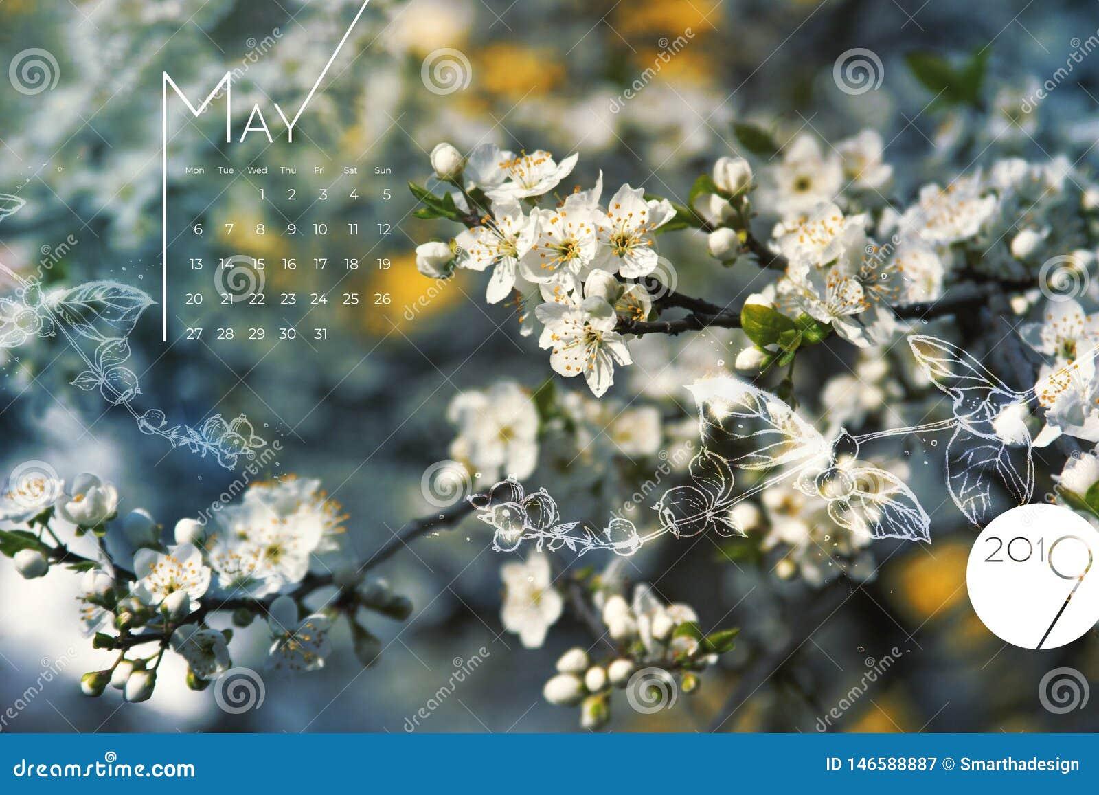 Цветки весны календаря 2019 -го в мае цветут Красивый белый экран цветеня вишни, настольный месяц 05, 2019 Красочный календарь 20
