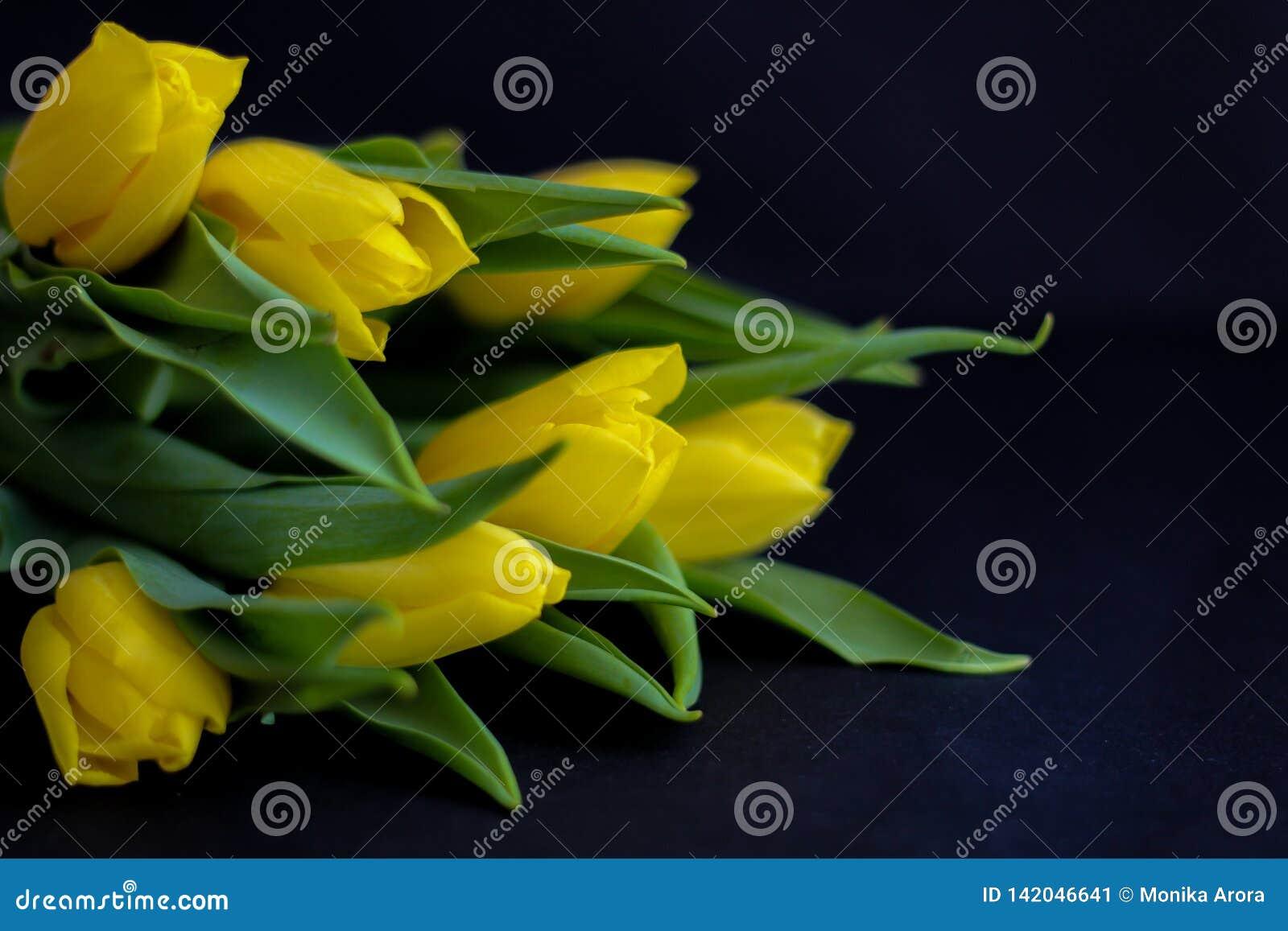 Цветки весны - концепция идеальная для социальных средств массовой информации