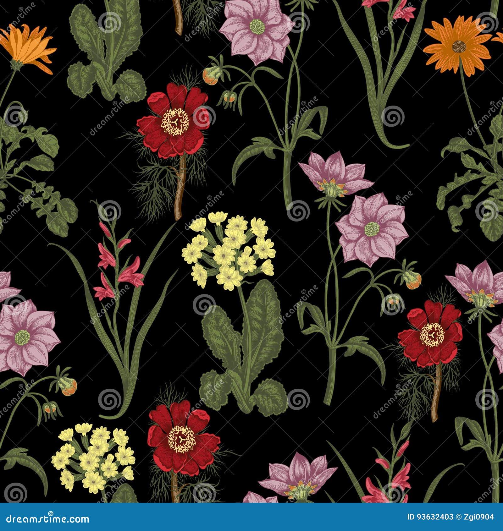 Цветки лета поля Безшовная предпосылка ботаническую Ткань, обои кровопролитное флористическая текстура картины