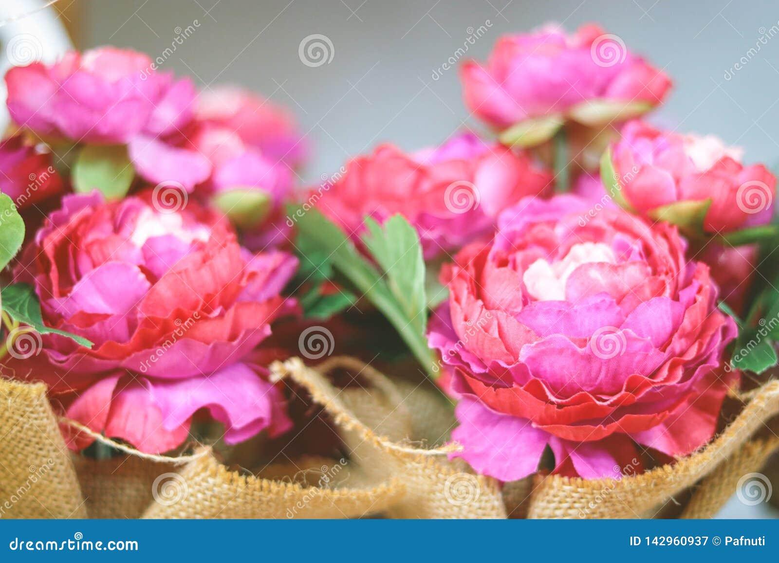 цветки корзины цветастые