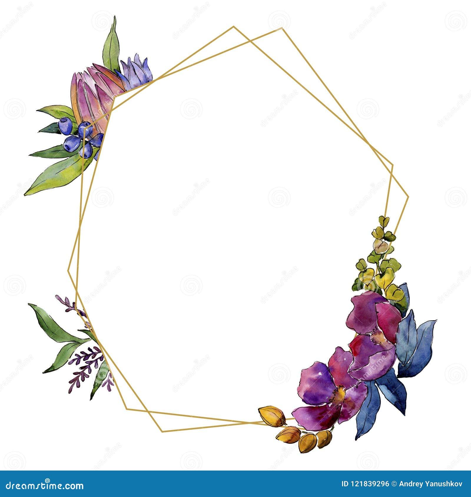 Цветки красочного букета тропические Флористический ботанический цветок Квадрат орнамента границы рамки