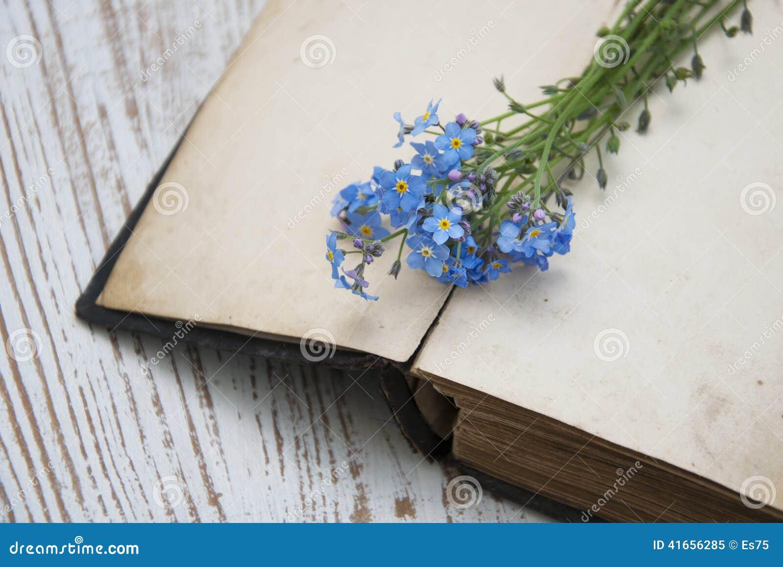 Цветки незабудок и старая книга
