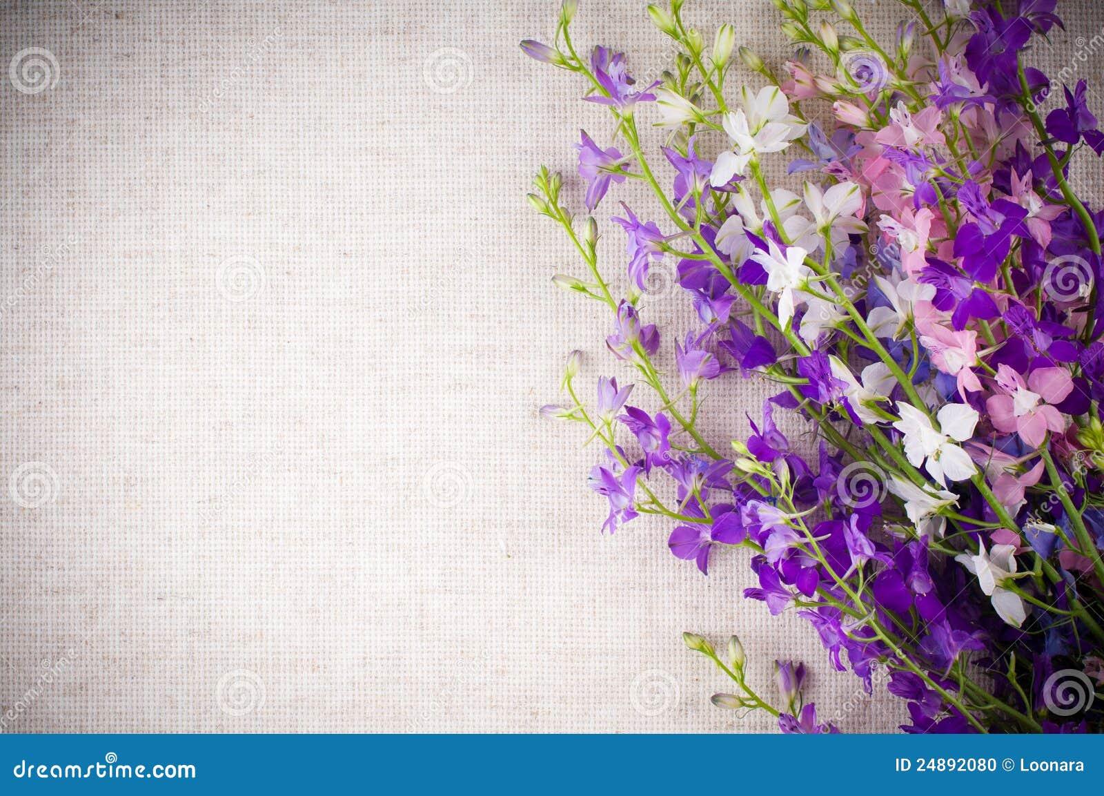 цветки предпосылки