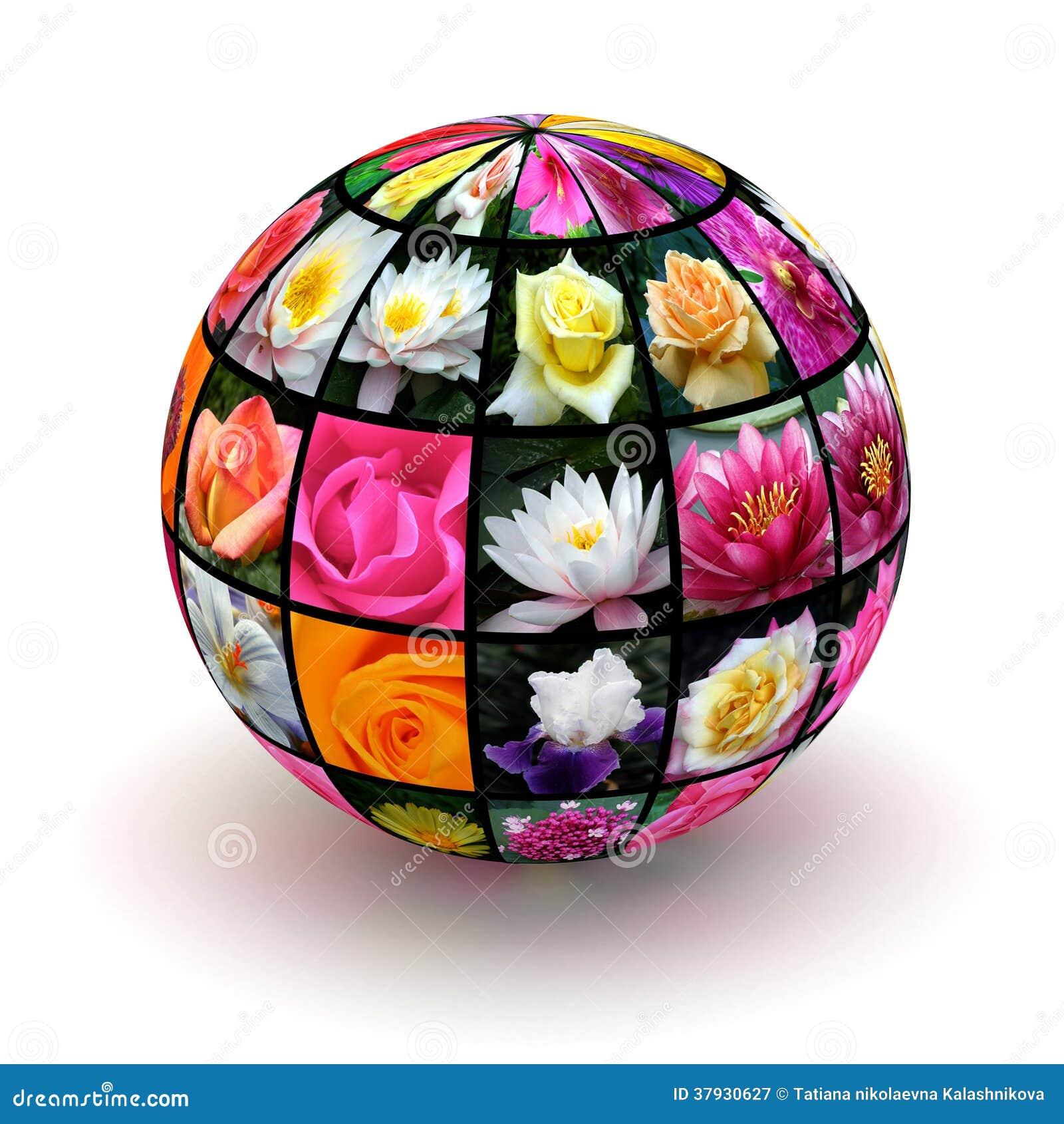Цветки планеты
