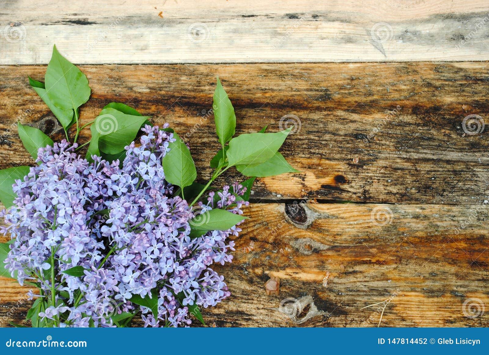 Цветки сирени на деревянном столе