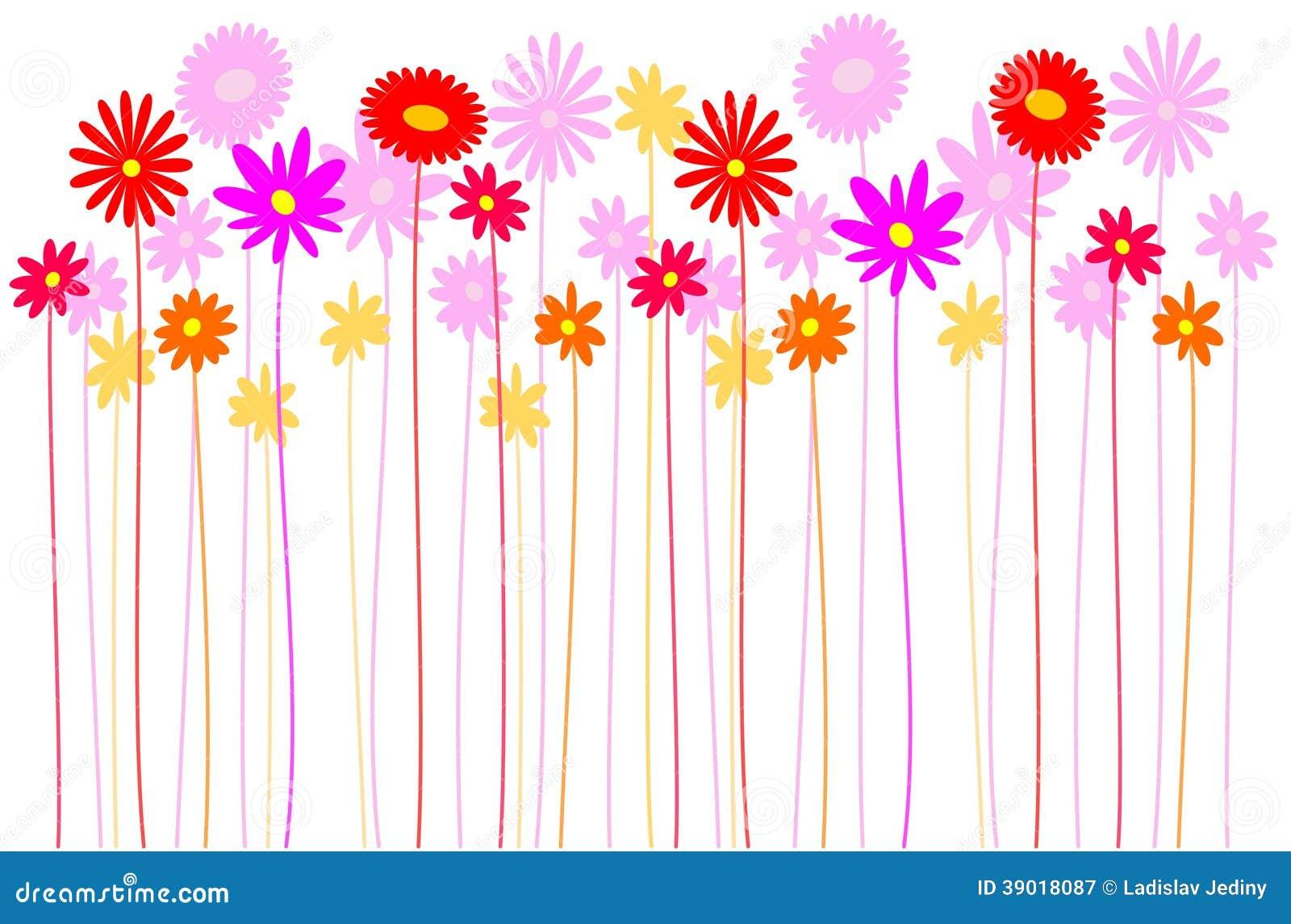 Цветки - луг