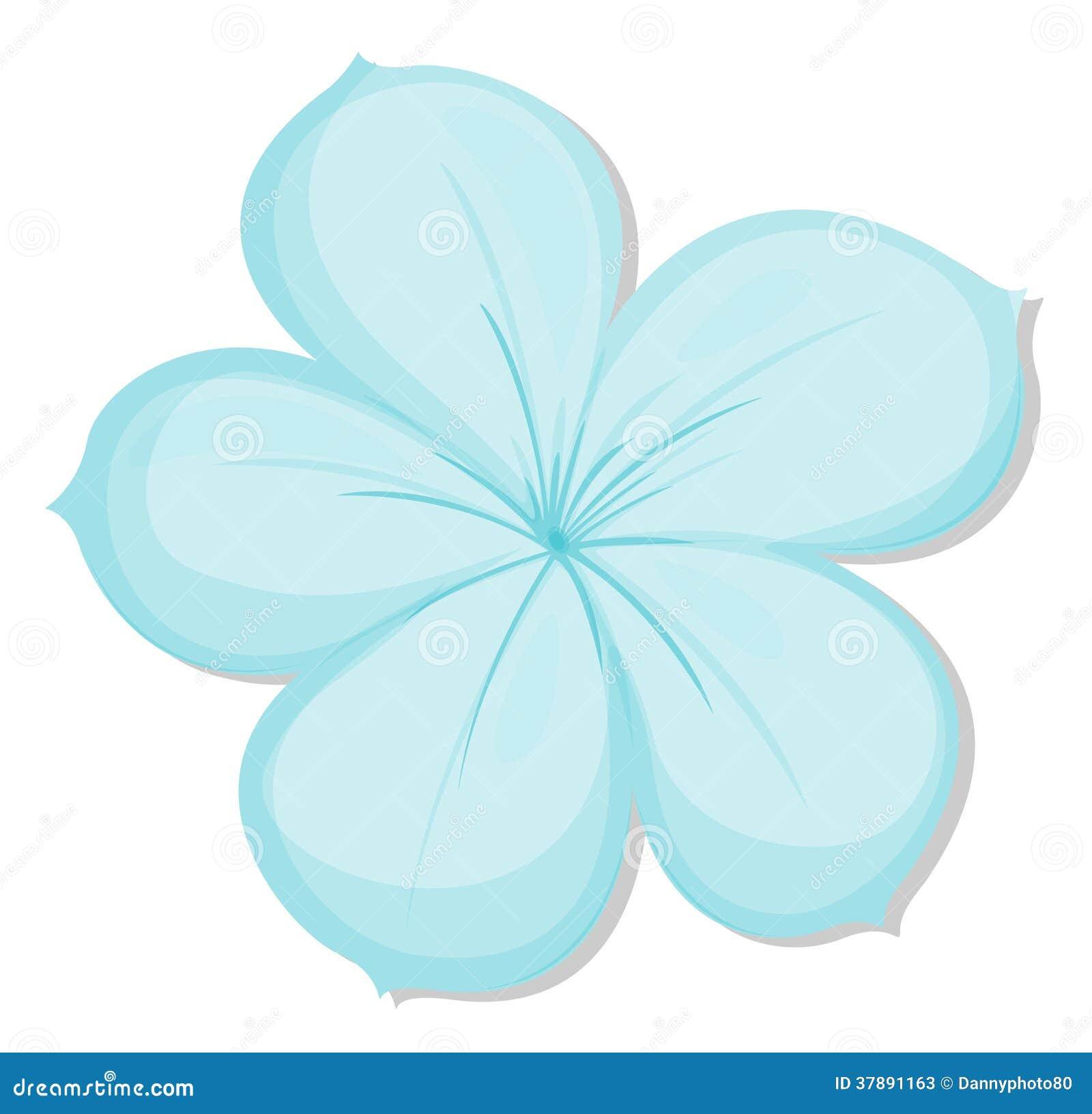 5 лепестков цветок
