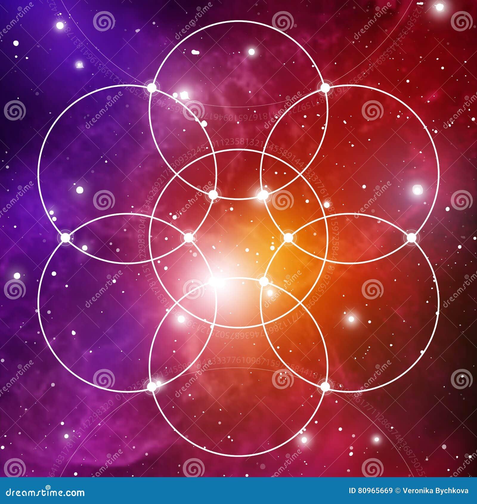 Цветок жизни - блокировать объезжает старый символ на предпосылке космического пространства геометрия священнейшая Формула природ