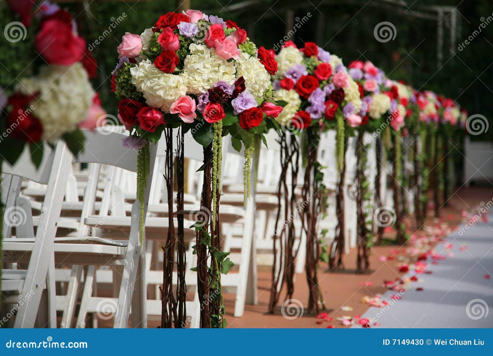 цветок расположения красивейший