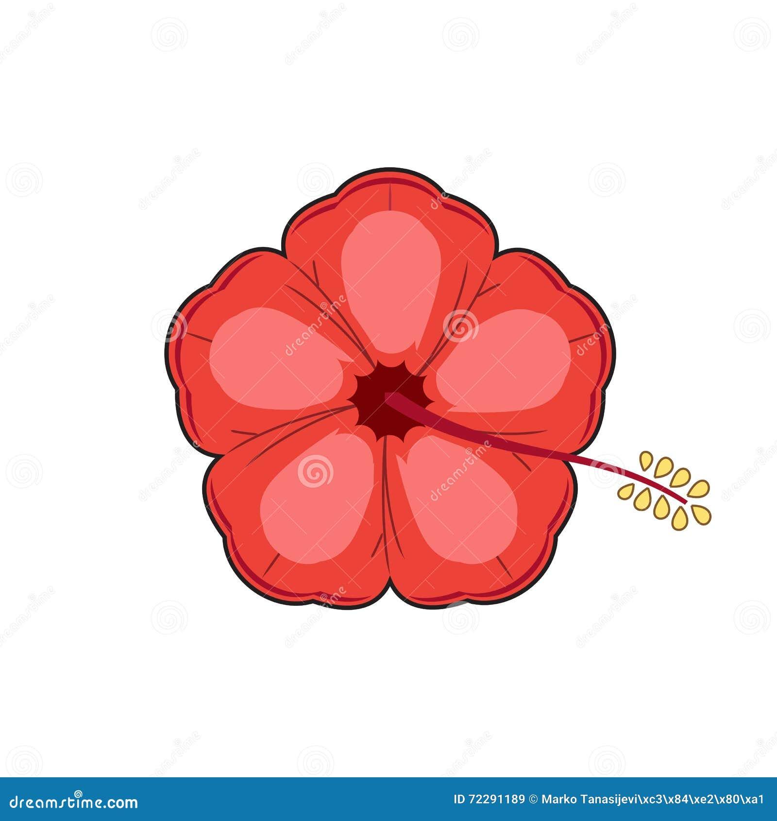 Download цветок тропический иллюстрация вектора. иллюстрации насчитывающей наконечников - 72291189