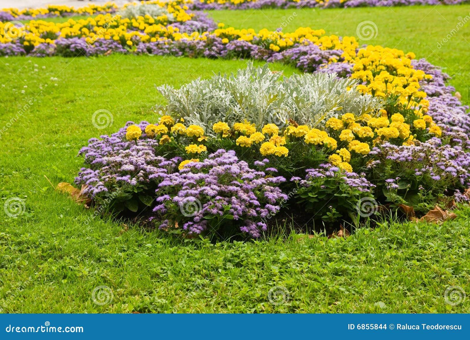 цветок украшения урбанский
