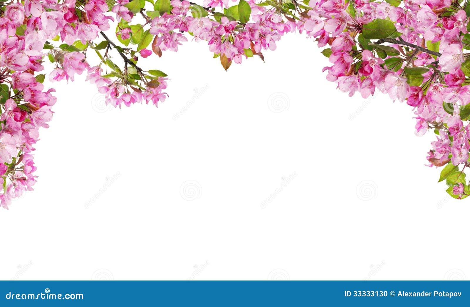 Поросенок в розовом цвете