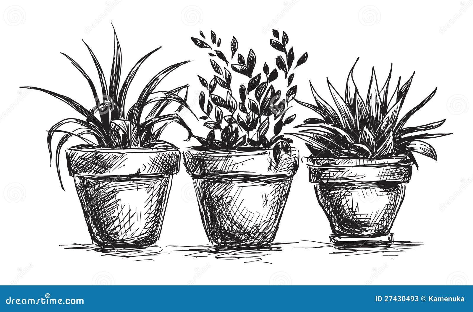 Нарисовать горшок с растениями