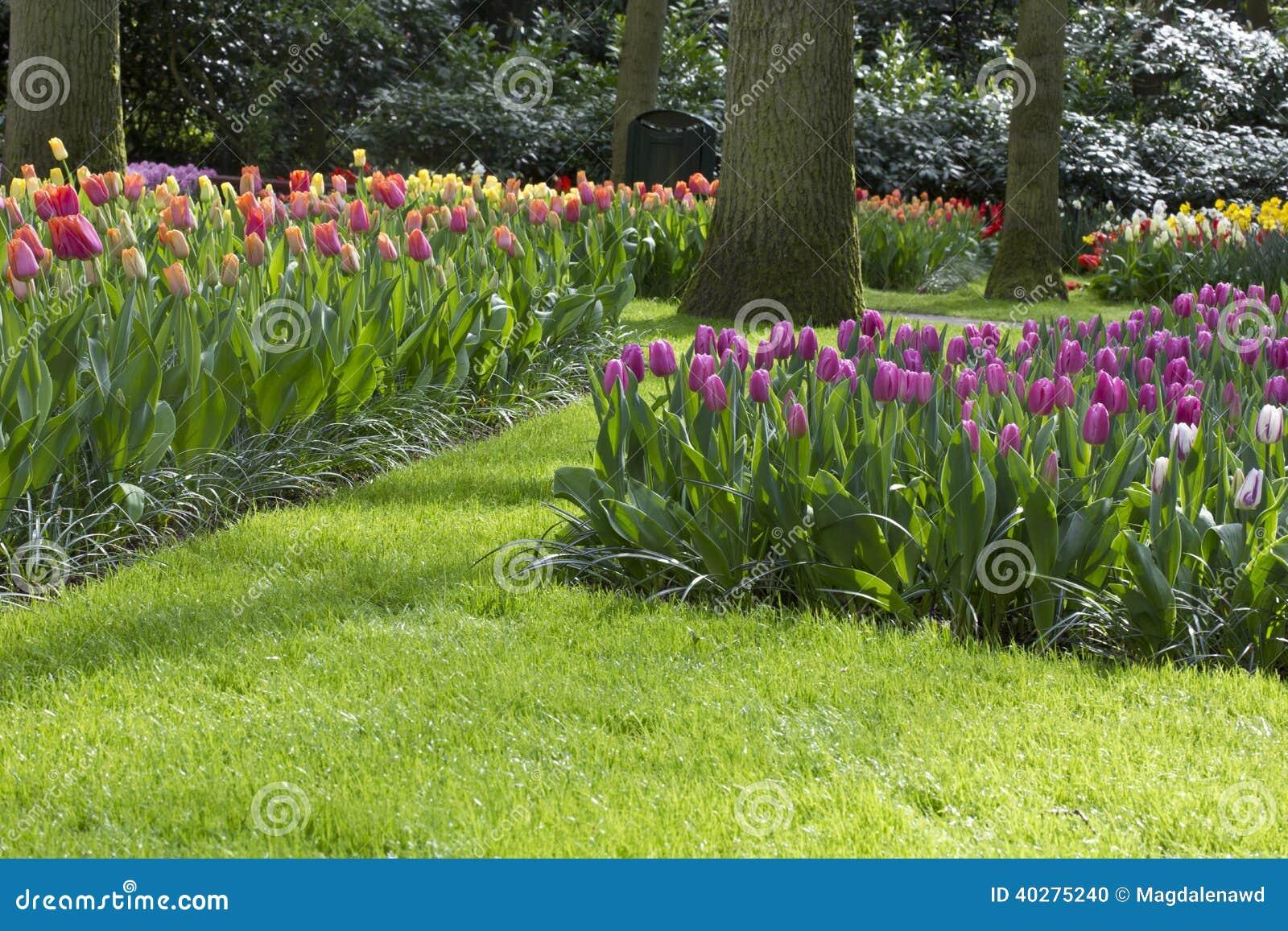 Цветочный сад весной