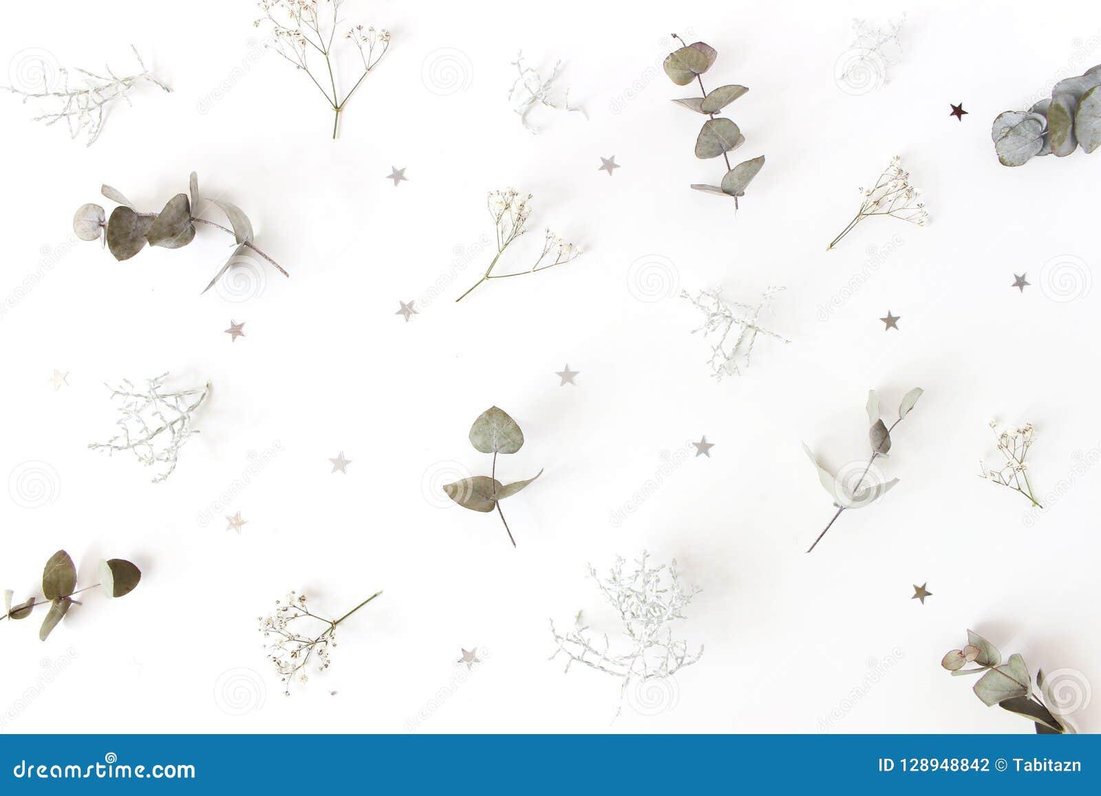 Цветочный узор рождества Состав ветвей дерева евкалипта, дыхание зимы ` s младенца цветет, brownii Calocephalus