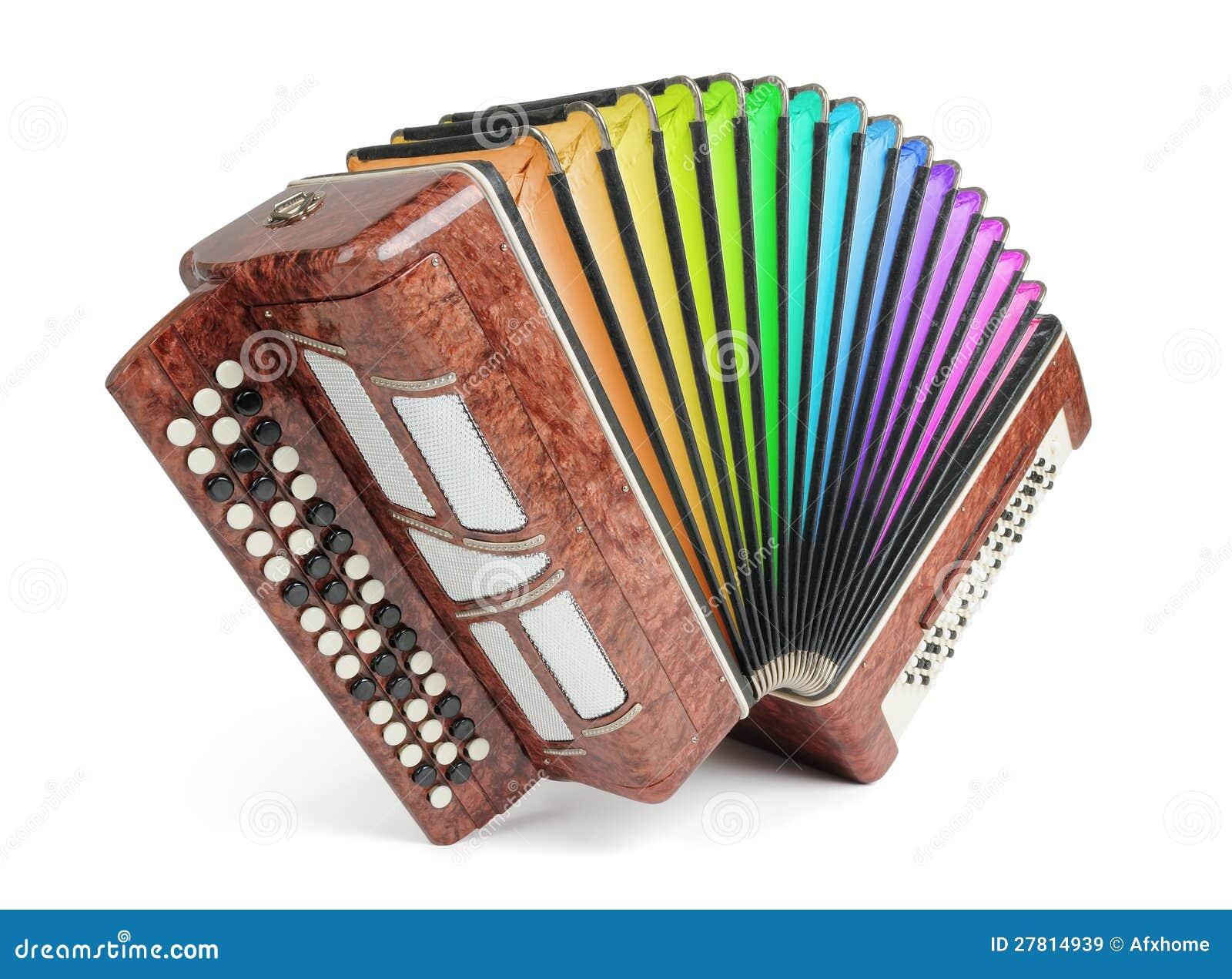 Цветы Brown bayan (аккордеоня) радуги