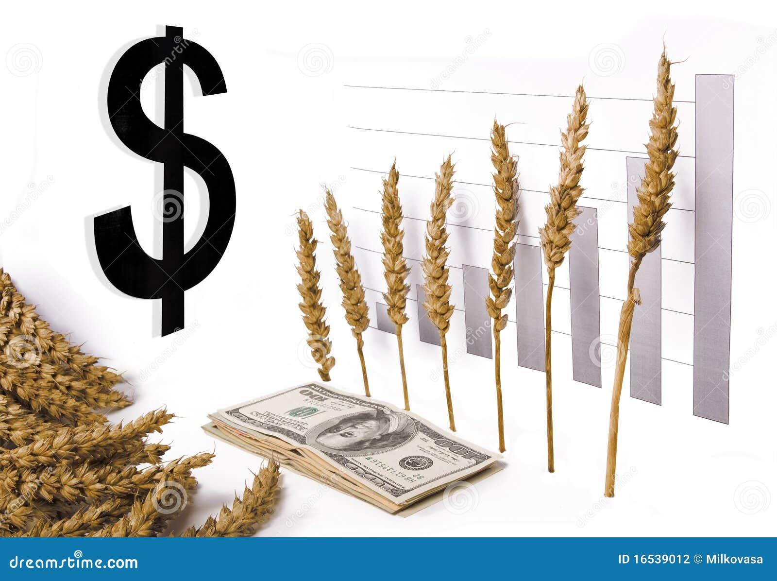 цена роста зерна