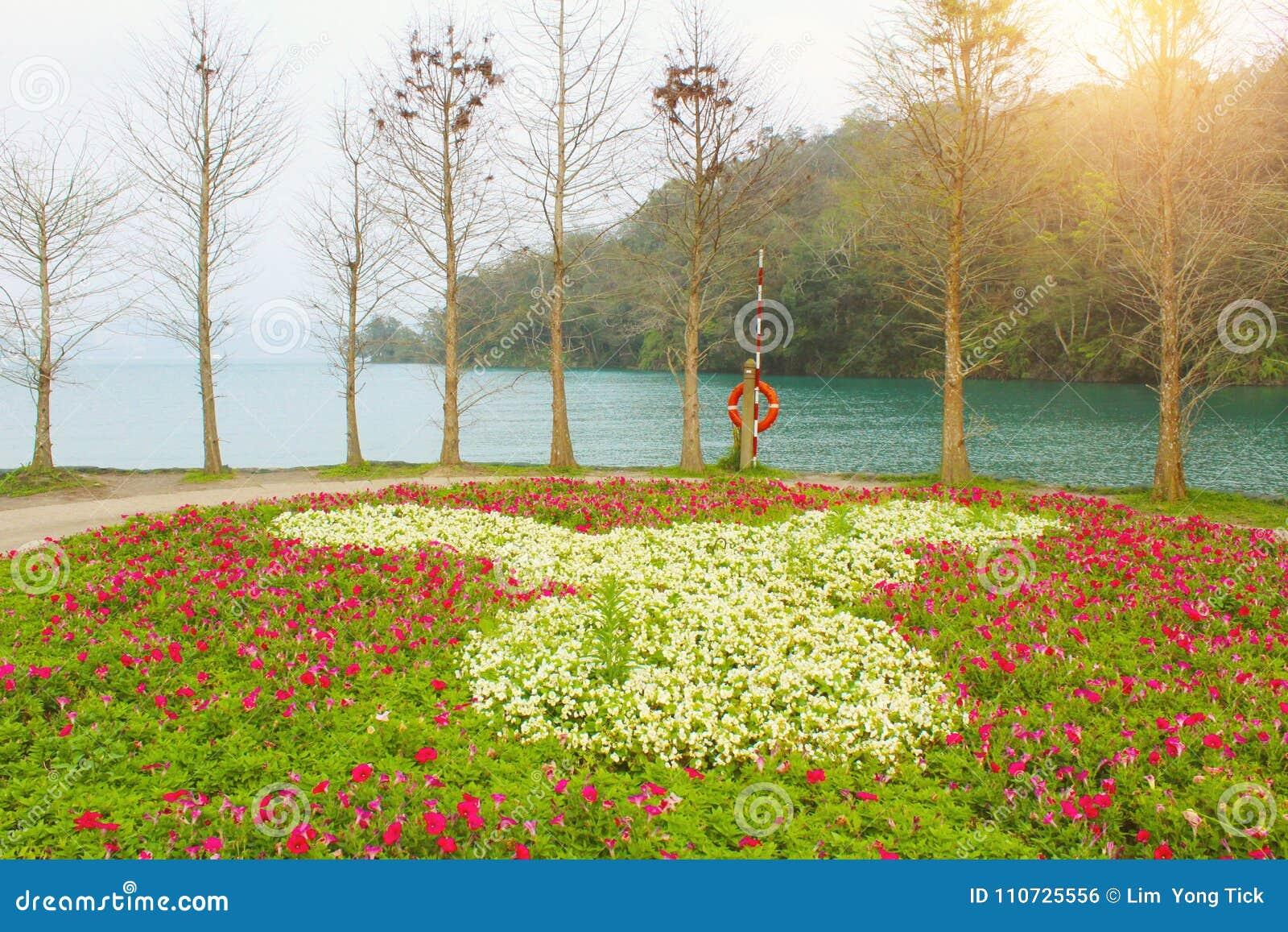 центральные восхитительные горы луны озера устанавливают солнце taiwan остальных релаксации поистине