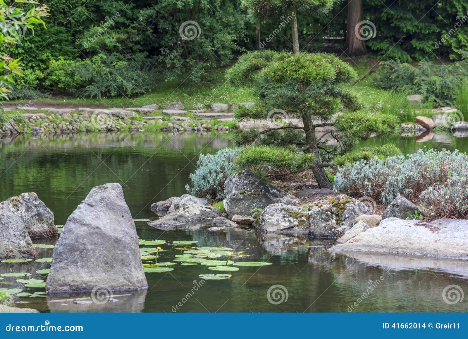 Часть японского сада