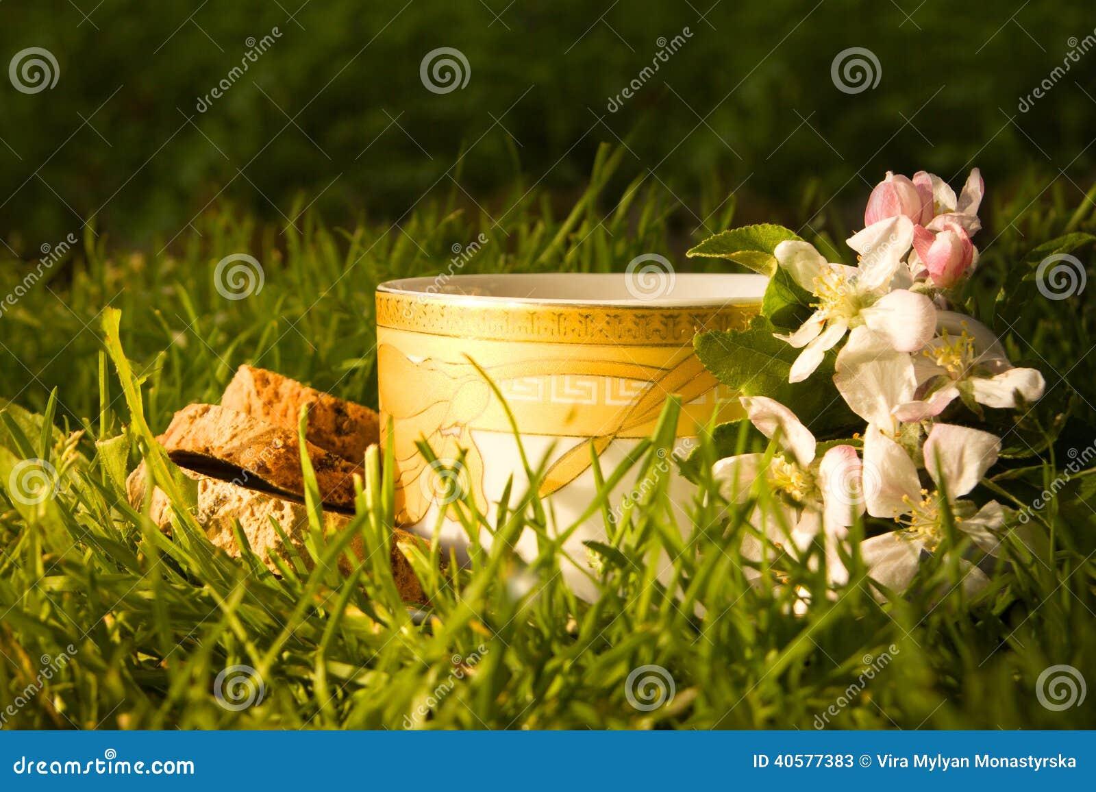 Чашка чая плодоовощей и зацветая цветок яблока