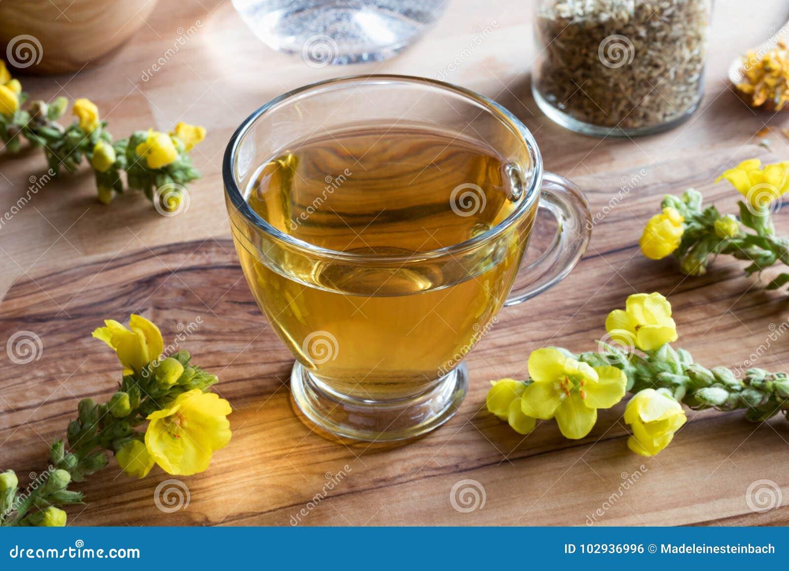 Чашка чая mullein с mullein цветет на заднем плане