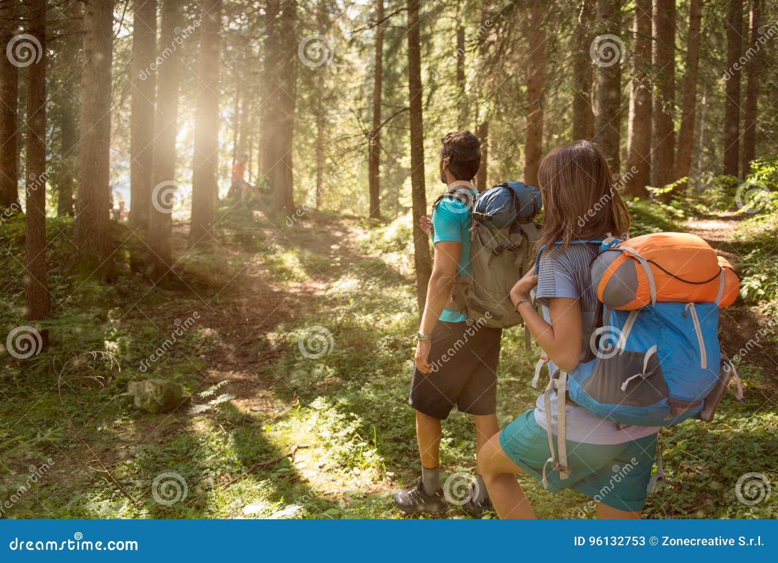 Человек и женщина с рюкзаком идя на путь тропы в древесинах леса во время солнечного дня Группа в составе лето людей друзей