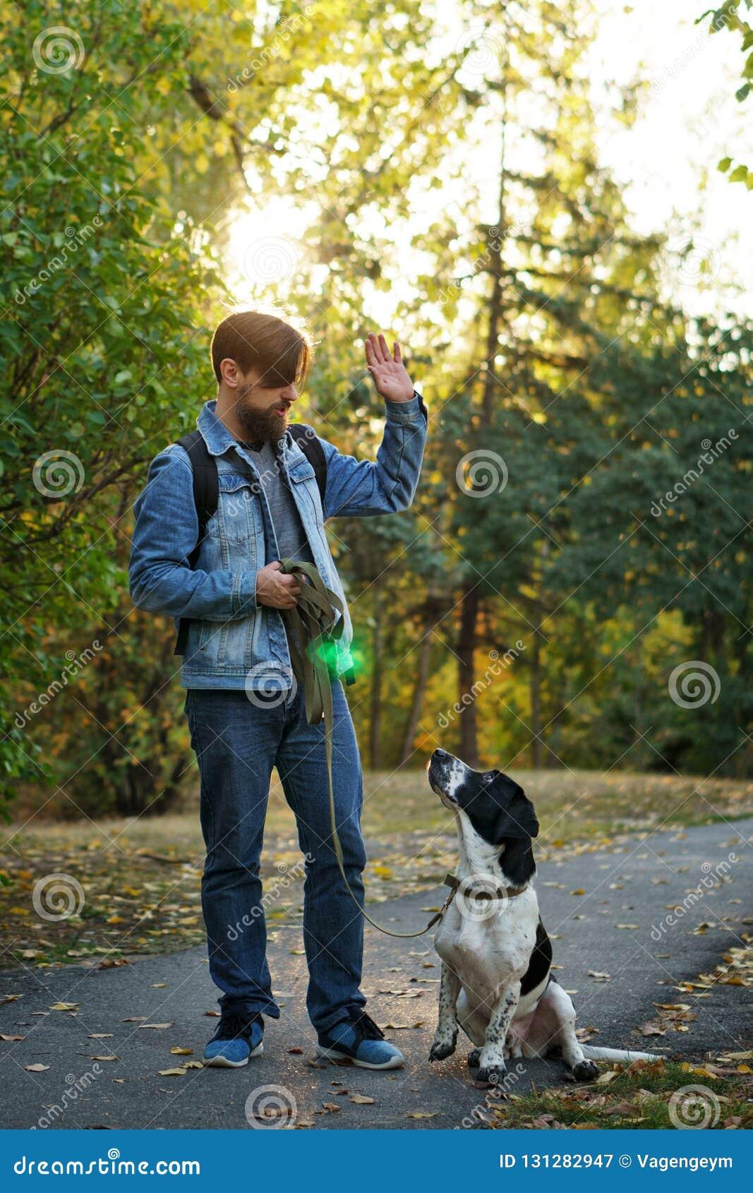 Человек и собака в парке осени