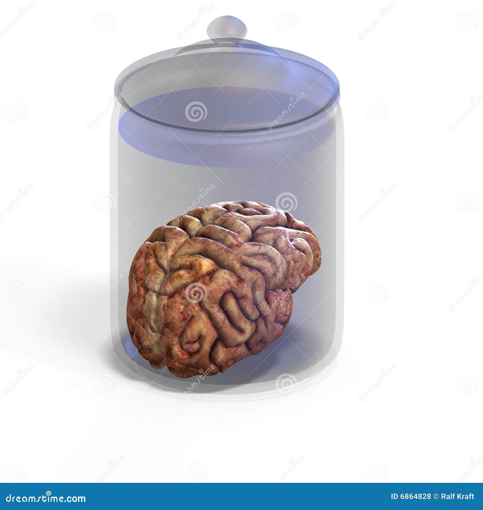 человек мозга
