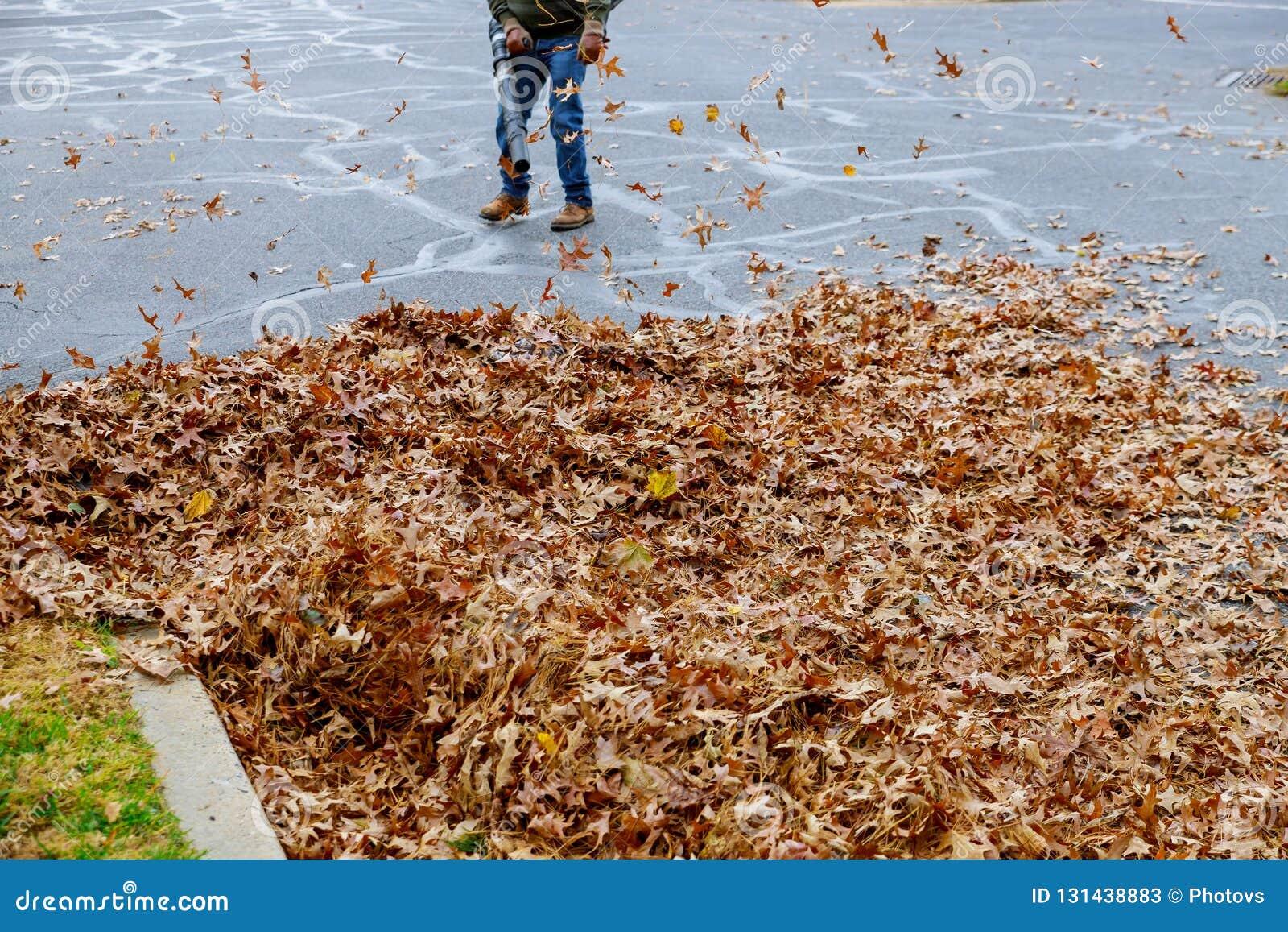 Человек работая с воздуходувкой лист листья вверх и вниз на солнечный день