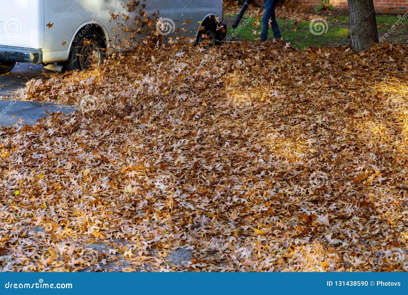 Человек работая с листьями воздуходувки лист вверх и вниз на солнечный день
