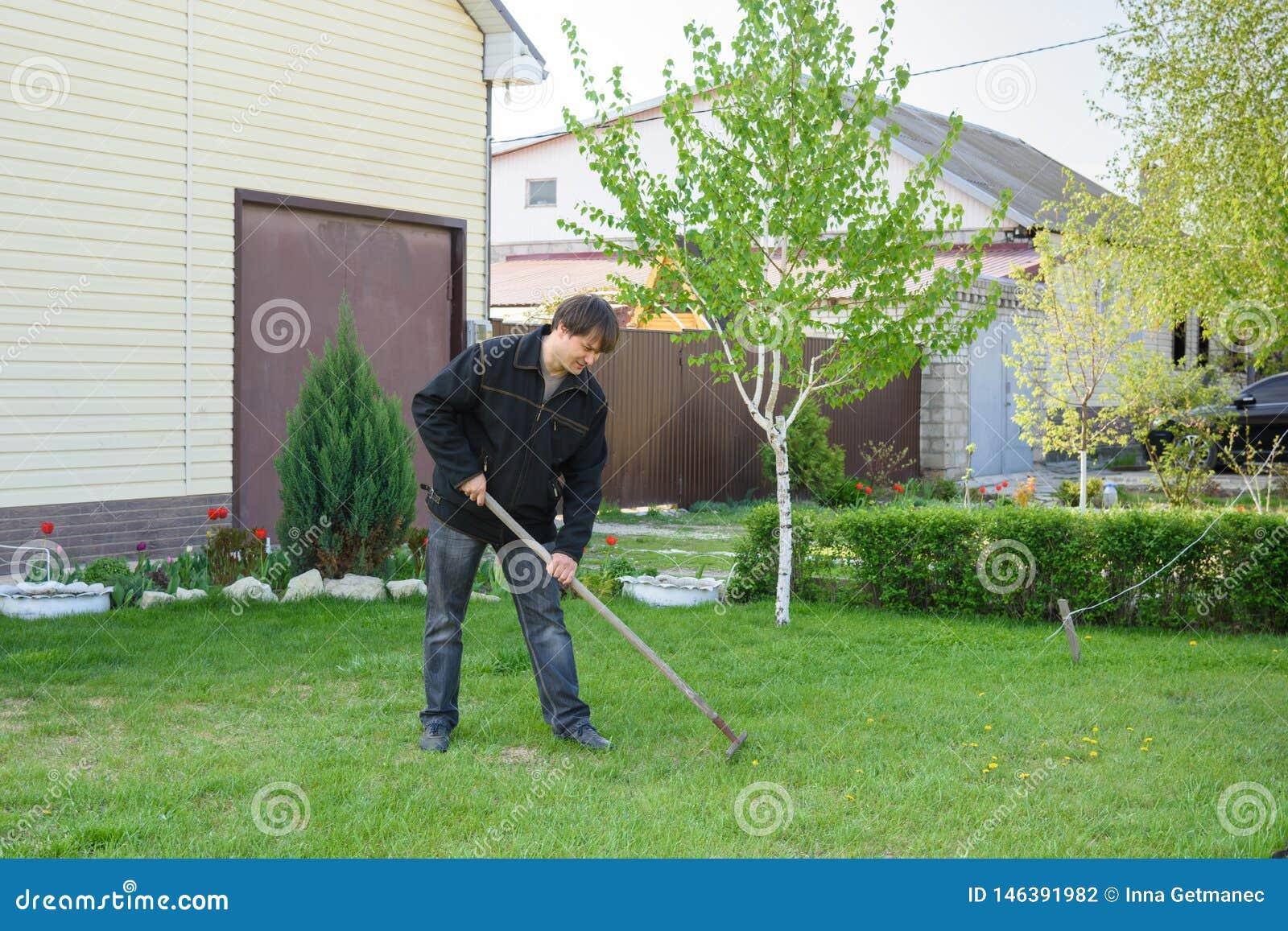 Человек сгребает старую листву на лужайке зеленой травы на его коттедже лета