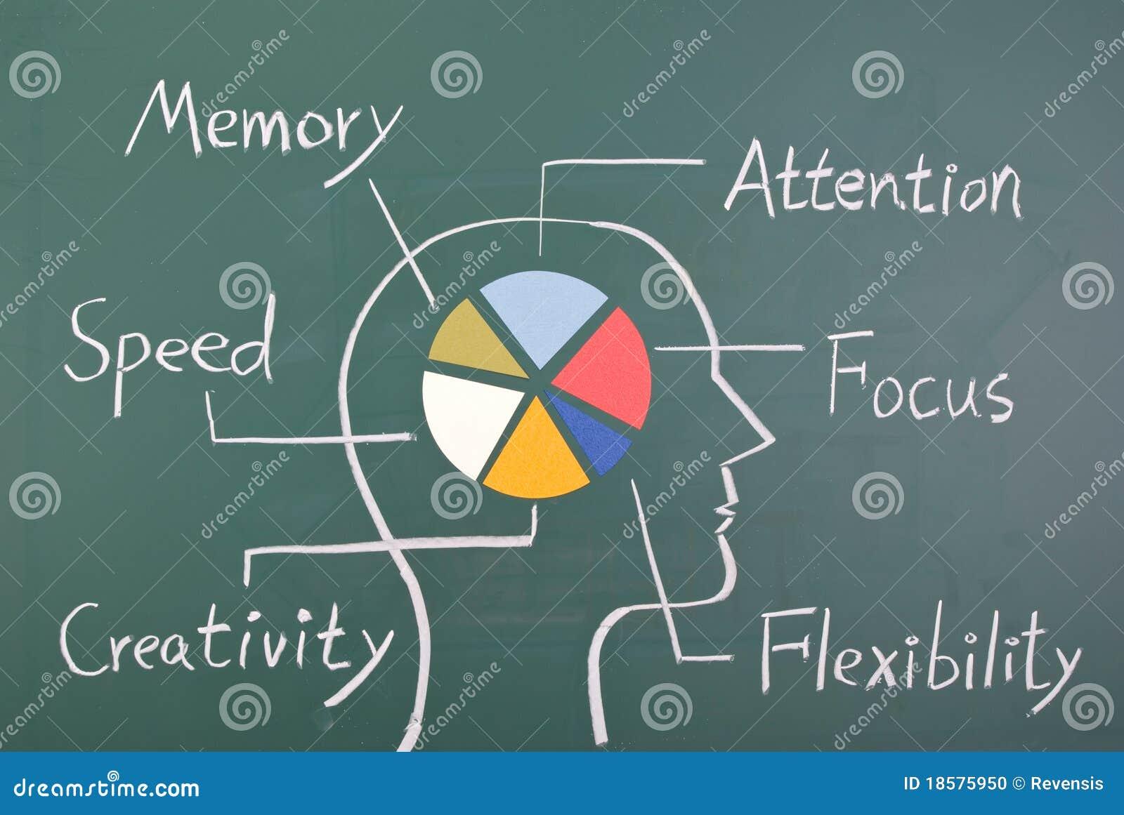 человек 6 принципиальной схемы мозга способности