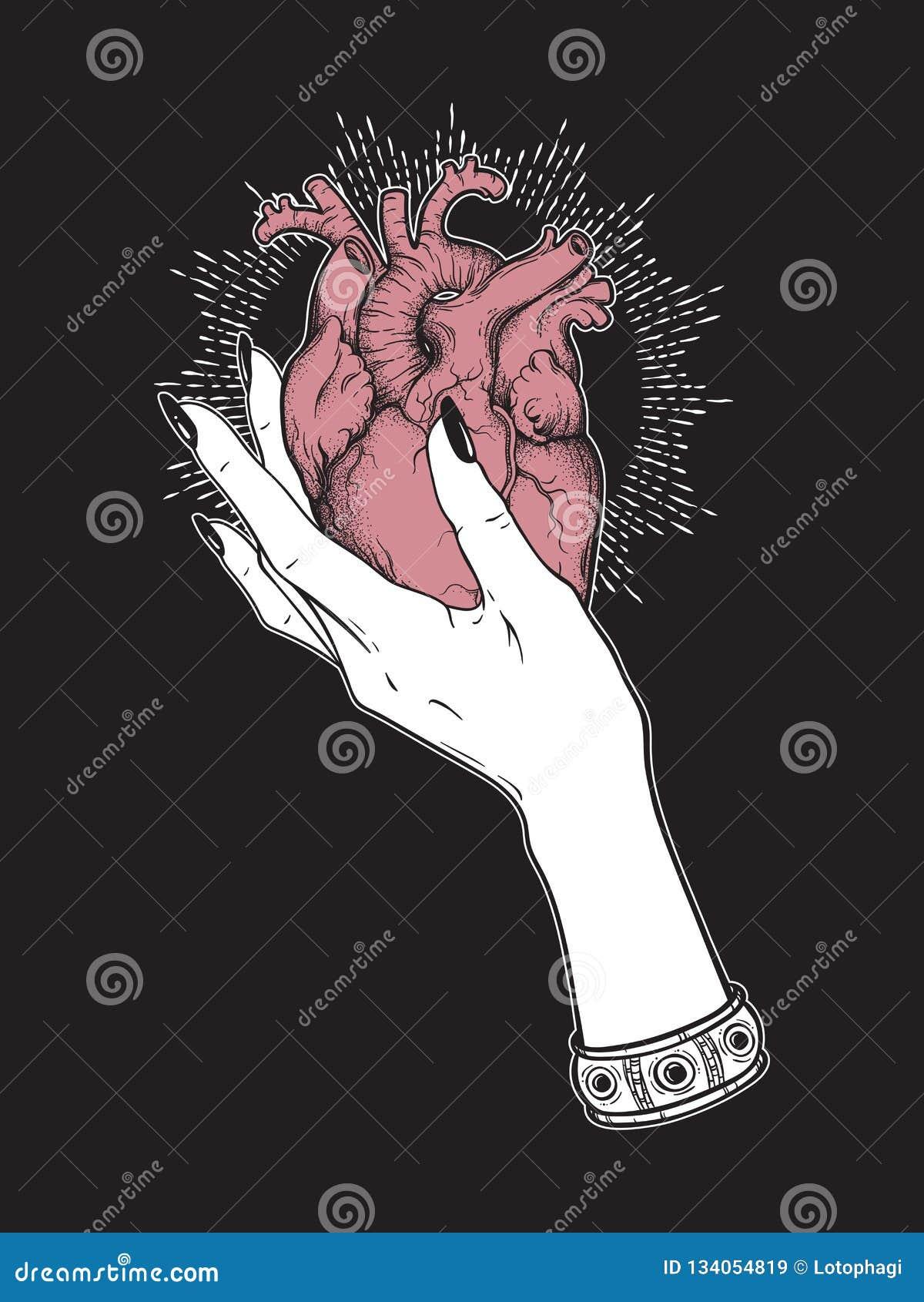 Человеческое сердце в грациозно женской изолированной руке Иллюстрация вектора татуировки стикера, печати или blackwork нарисован