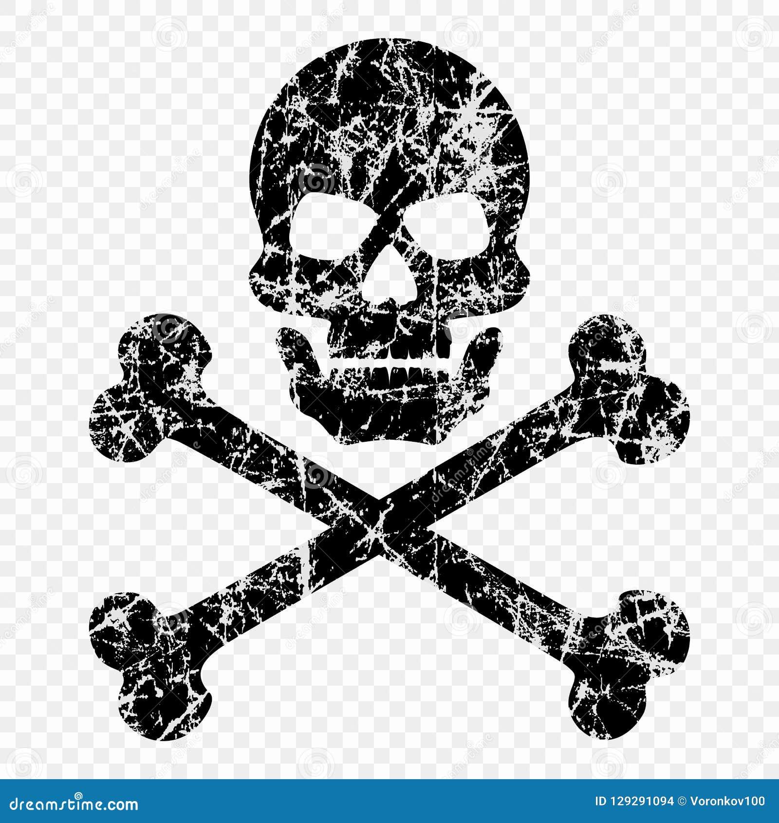 Череп с косточками поцарапал на изолированной прозрачной предпосылке Worn значок черепа Символ пиратов лавр граници покидает вект