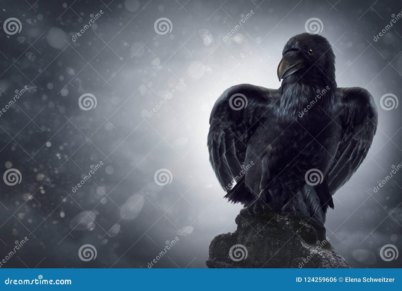 Черная ворона на могильном камне
