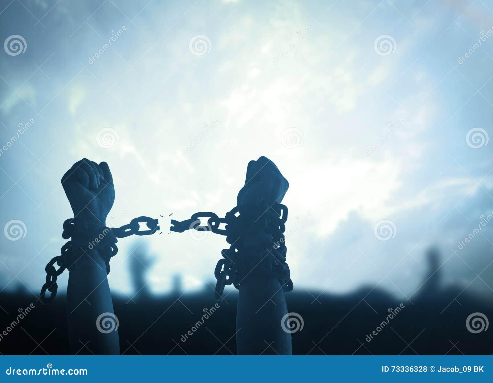черная изолированная свобода принципиальной схемы