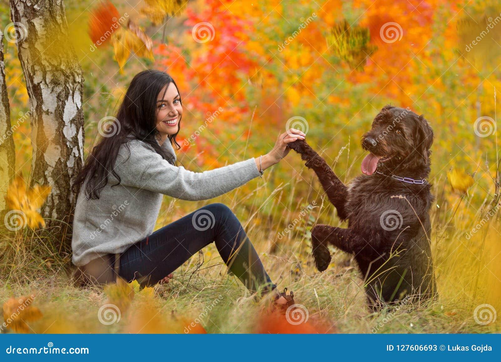 Черная собака остолопа представляя в парке осени