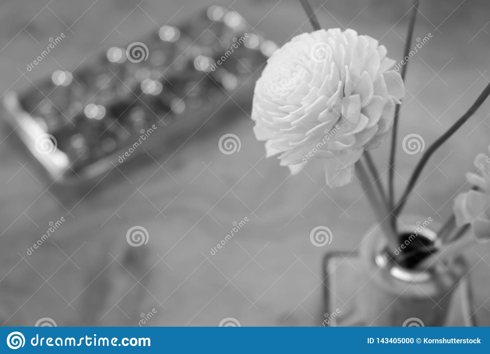 Черно-белая предпосылка цветка